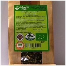 Geltonžiedžio barkūno žolė (40 g.)
