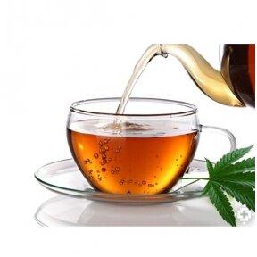 Kanapių arbata. Nauda ir paruošimas