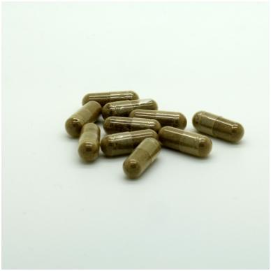 Koralų kalcis su vitaminu D3 2