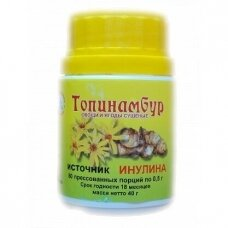 Maisto papildas Topinambur N80