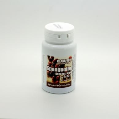 Spanguolių koncentratas su vitaminais C ir E