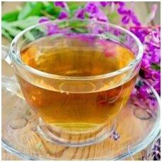 Gauromečio arbatos nauda
